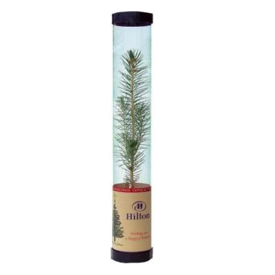 ECO POST A CHRISTMAS TREE.