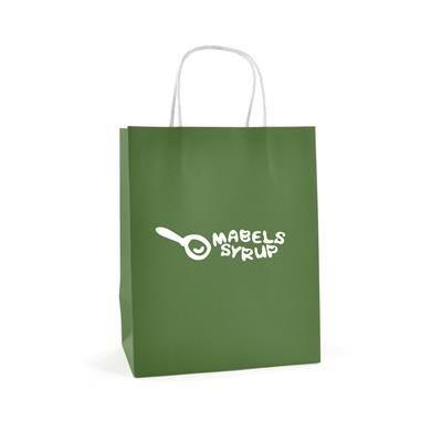 BRUNSWICK MEDIUM PAPER BAG in Green.