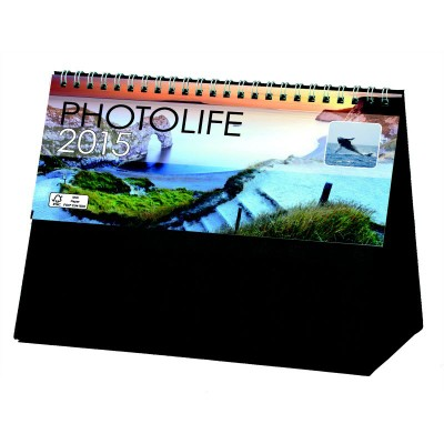PHOTOLIFE PVC DESK EASEL CALENDAR.