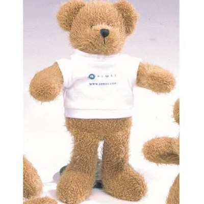 SCRAGGY BEAR with Printed Tee Shirt.