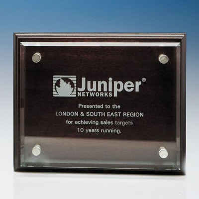 CLEAR TRANSPARENT GLASS RECTANGULAR MOUNTED ON MAHOGANY PLAQUE.