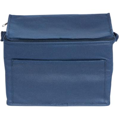 RAINHAM 6 CAN COOLER BAG in Navy Blue.