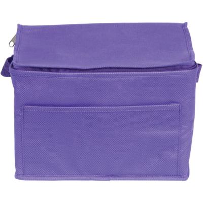 RAINHAM 6 CAN COOLER BAG in Purple.
