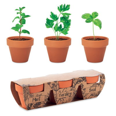 Picture of TERRACOTTA 3 HERB POT SET