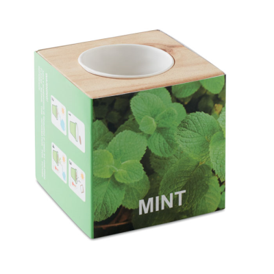 Picture of HERB POT WOOD MINTS