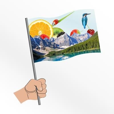 Picture of MEDIUM FABRIC HAND WAVING FLAG