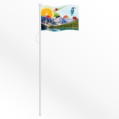 Picture of SMALL NATIONAL FLAG