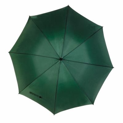 Picture of TORNADO WINDPROOF UMBRELLA in Green