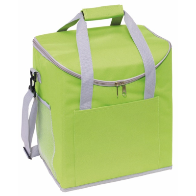Picture of FROSTY COOL BAG in Green