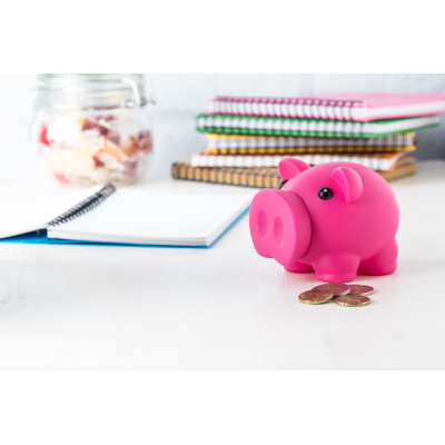 Picture of DONAX PLASTIC PIGGY BANK with Removable Nose for Opening