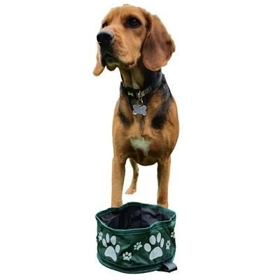 Picture of FOLDING DOG BOWL