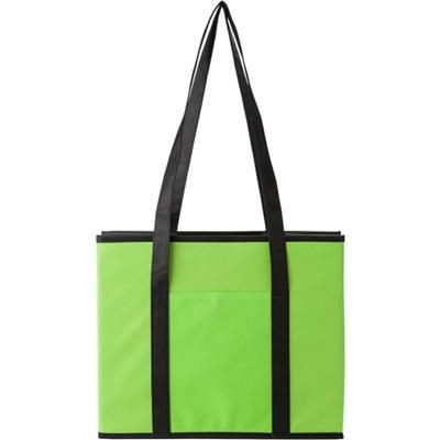 Picture of NON WOVEN FOLDING CAR ORGANIZER in Pale Green