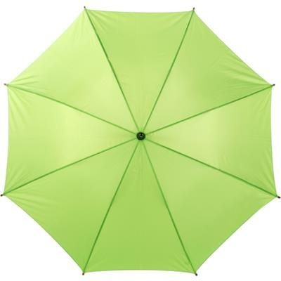 Picture of CLASSIC UMBRELLA in Light Green