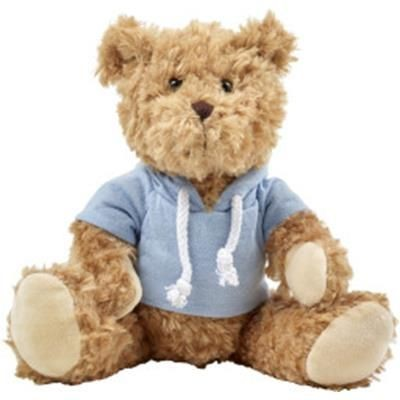 Picture of PLUSH TEDDY BEAR with Hooded Hoody