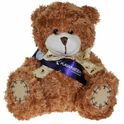 Picture of 18CM PAW BEAR with Sash