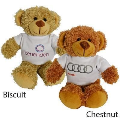 Picture of 20CM BARNEY BEAR with Tee Shirt
