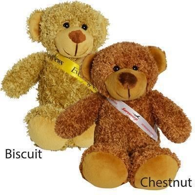 Picture of 30CM BARNEY BEAR with Sash