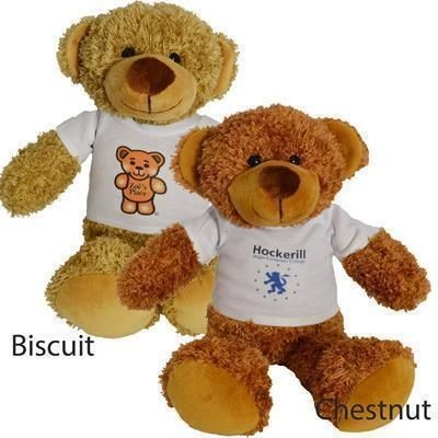 Picture of 30CM BARNEY BEAR with Tee Shirt