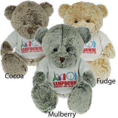 Picture of 25CM PREMIER BEAR with Tee Shirt