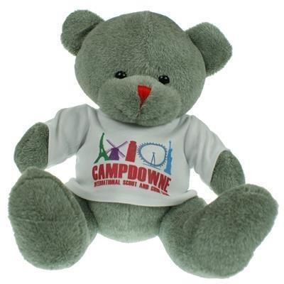 Picture of 25CM RED NOSE BEAR with Tee Shirt