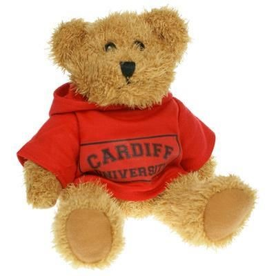 Picture of 20CM SPARKIE BEAR with Hoody