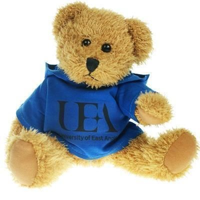 Picture of 25CM SPARKIE BEAR with Hoody