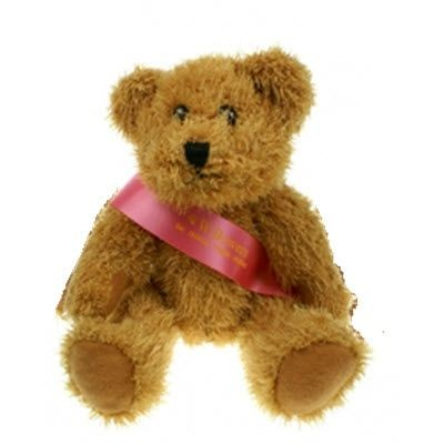 Picture of 20CM SPARKIE BEAR with Sash