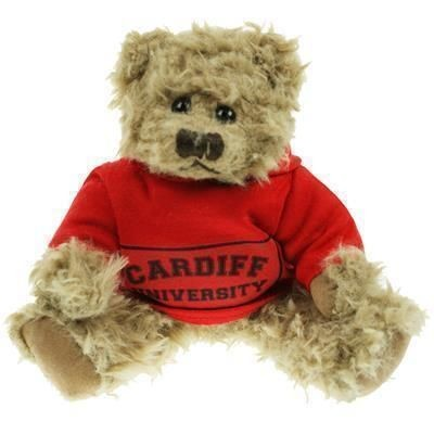Picture of 20CM WINDSOR BEAR with Hoody