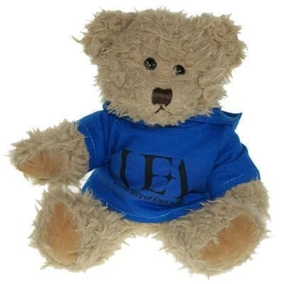 Picture of 25CM WINDSOR BEAR with Hoody