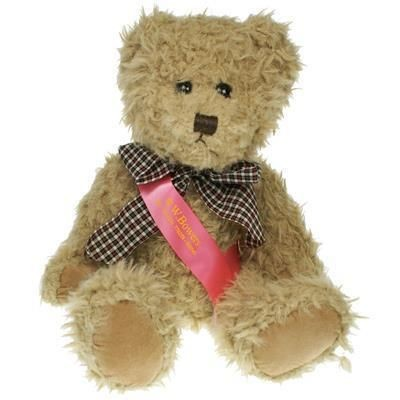 Picture of 25CM WINDSOR BEAR with Sash