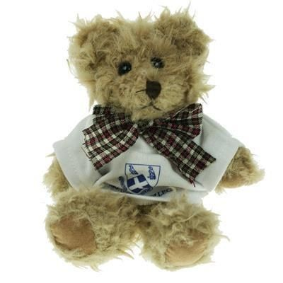 Picture of 15CM WINDSOR BEAR with Tee Shirt