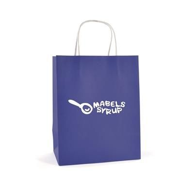 Picture of BRUNSWICK MEDIUM PAPER BAG in Blue