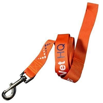 Picture of DOG LEAD
