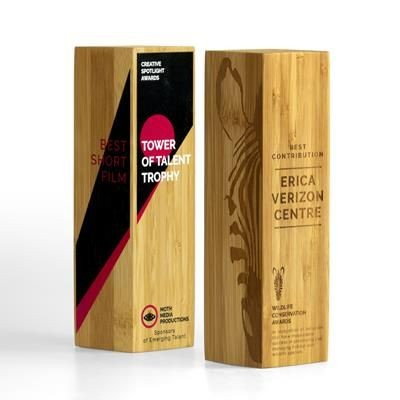 Picture of BAMBOO COLUMN AWARD