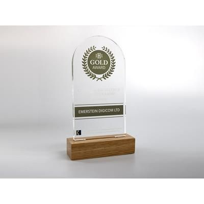 Picture of STANDARD SHAPE ACRYLIC AWARD with Engraved Wood Base