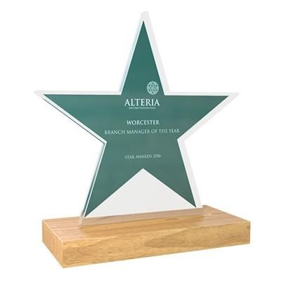 Picture of FREESTANDING BESPOKE ACRYLIC AWARD with Real Wood Base