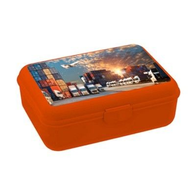 Picture of SCHOOL BOX DELUXE LUNCH BOX in Orange