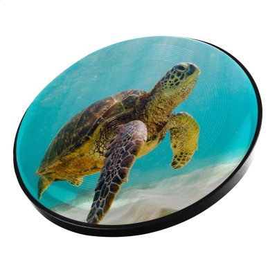 Picture of SPACE FLYER 22 FRISBEE in Black