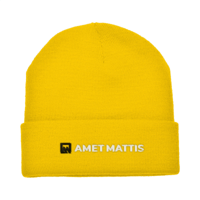 Picture of ANTARCTICA HAT in Yellow