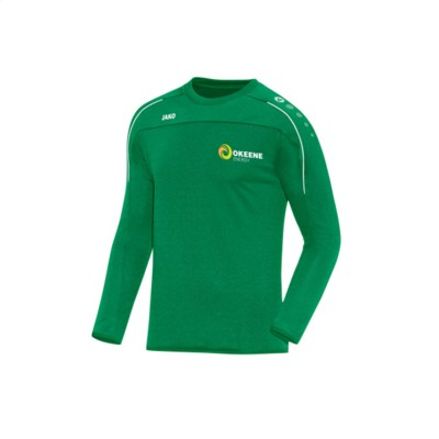 Picture of JAKO® SWEATER CLASSICO MENS in Green