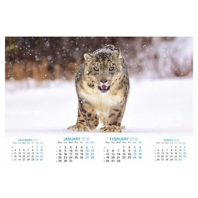 Picture of ENDANGERED SPECIES OPTIMA DUO 7 LEAF CALENDAR