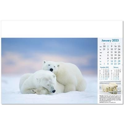 Picture of BLUE PLANET WALL CALENDAR