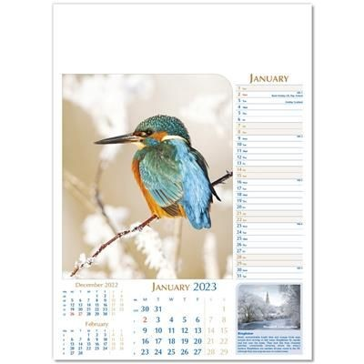Picture of NOTABLE WILDLIFE WALL CALENDAR