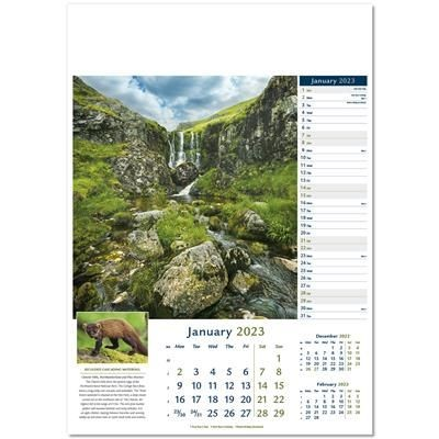 Picture of WONDERS OF NATURE WALL CALENDAR
