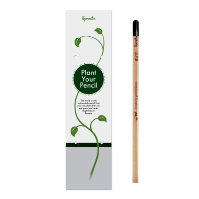 Picture of SPROUT PENCIL in Single Packaging