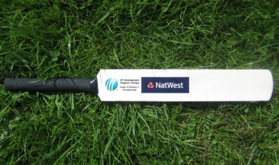 Picture of 17 INCH MINI WOOD CRICKET BAT