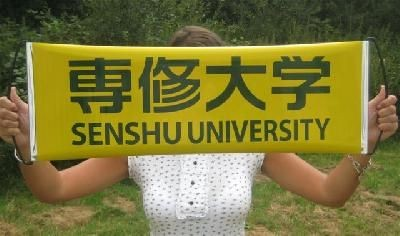 Picture of HAND ROLLER BANNER