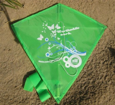 Picture of MINI LOGO KITE