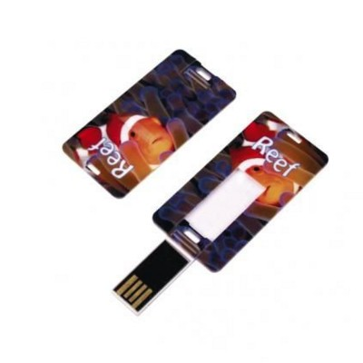 Picture of CARD TAG USB FLASH DRIVE MEMORY STICK