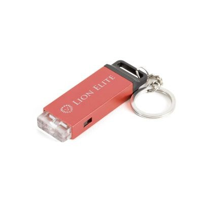 Picture of HAXBY TORCH KEYRING